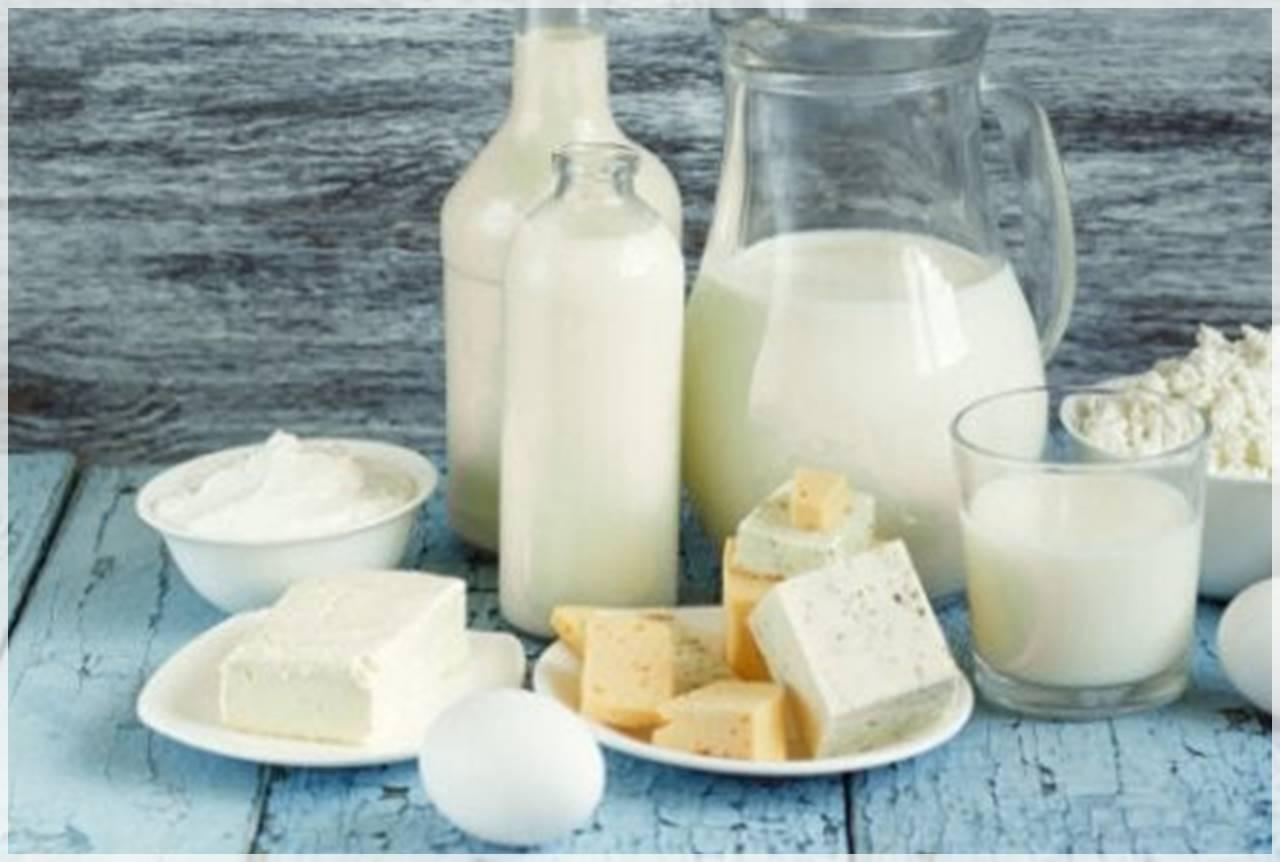 lácteos en la dieta de los niños